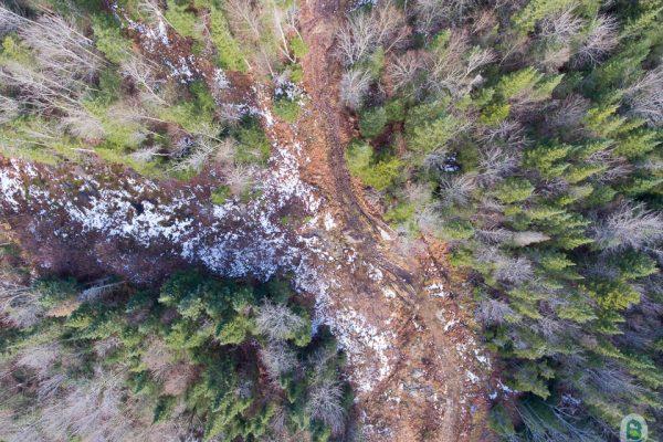 Vue aérienne d'un sentier forestier du mont Tourbillon